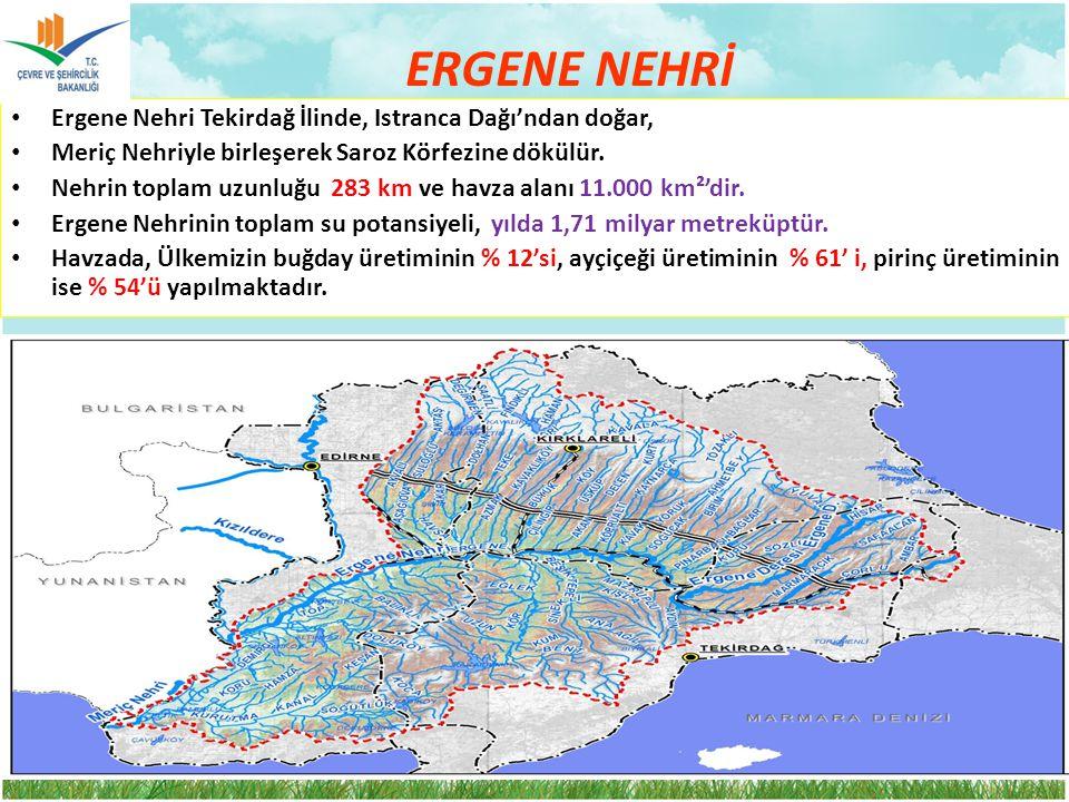 ERGENE NEHRİ Ergene Nehri Tekirdağ İlinde, Istranca Dağı'ndan doğar,