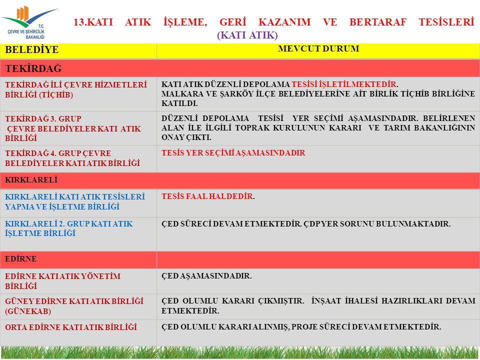 13.KATI ATIK İŞLEME, GERİ KAZANIM VE BERTARAF TESİSLERİ (KATI ATIK)