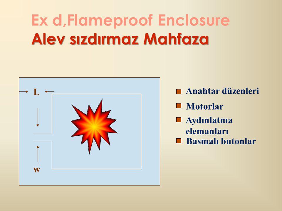 Ex d,Flameproof Enclosure Alev sızdırmaz Mahfaza