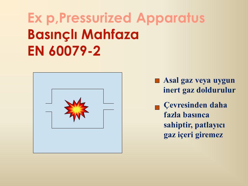 Ex p,Pressurized Apparatus Basınçlı Mahfaza EN 60079-2