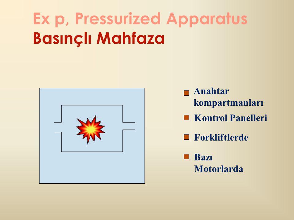 Ex p, Pressurized Apparatus Basınçlı Mahfaza