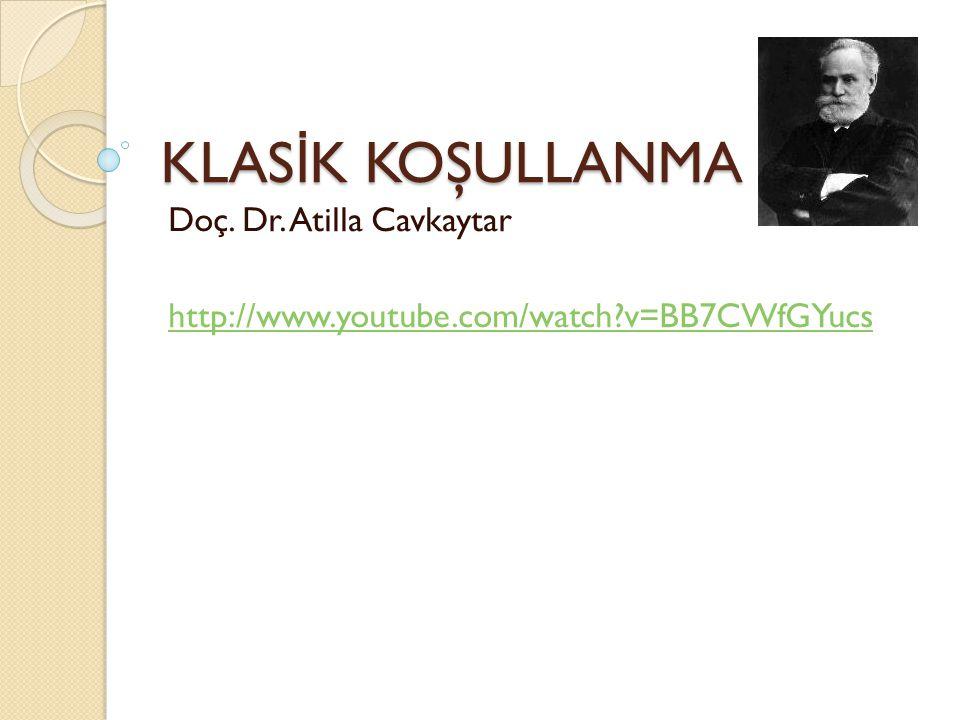 Doç. Dr. Atilla Cavkaytar http://www.youtube.com/watch v=BB7CWfGYucs