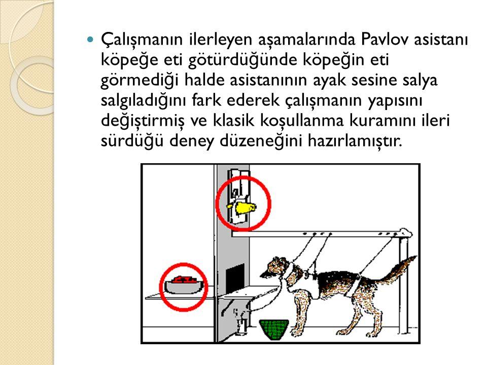 Çalışmanın ilerleyen aşamalarında Pavlov asistanı köpeğe eti götürdüğünde köpeğin eti görmediği halde asistanının ayak sesine salya salgıladığını fark ederek çalışmanın yapısını değiştirmiş ve klasik koşullanma kuramını ileri sürdüğü deney düzeneğini hazırlamıştır.