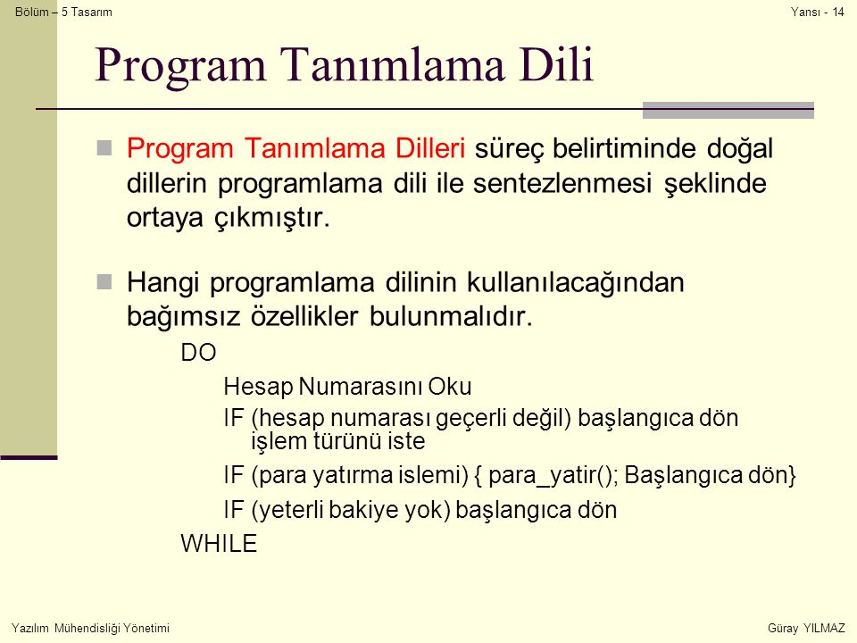 Program Tanımlama Dili