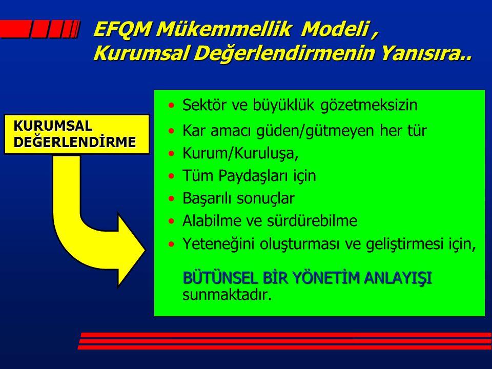 EFQM Mükemmellik Modeli , Kurumsal Değerlendirmenin Yanısıra..