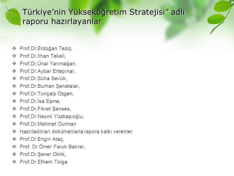 Türkiye'nin Yükseköğretim Stratejisi adlı raporu hazırlayanlar