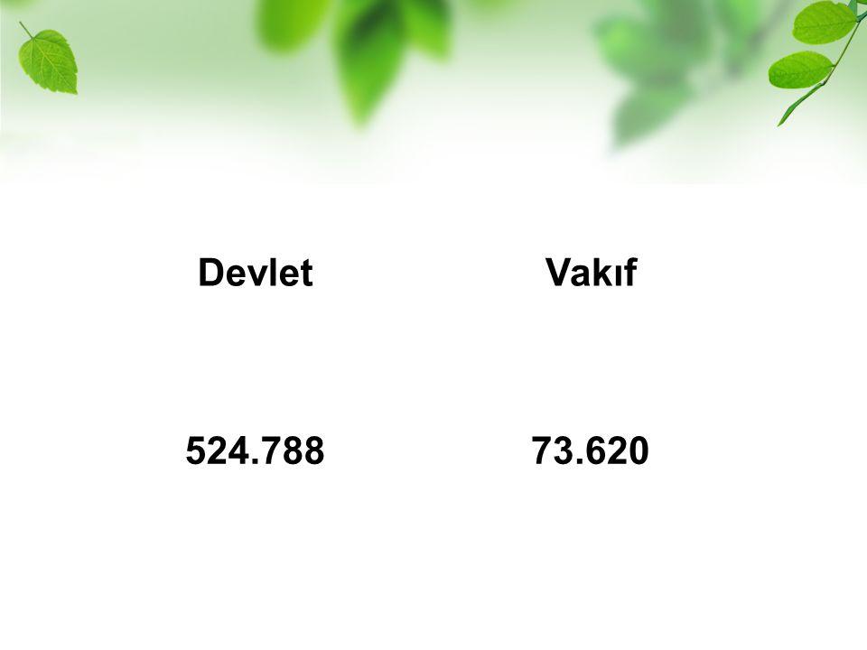 Devlet Vakıf 524.788 73.620
