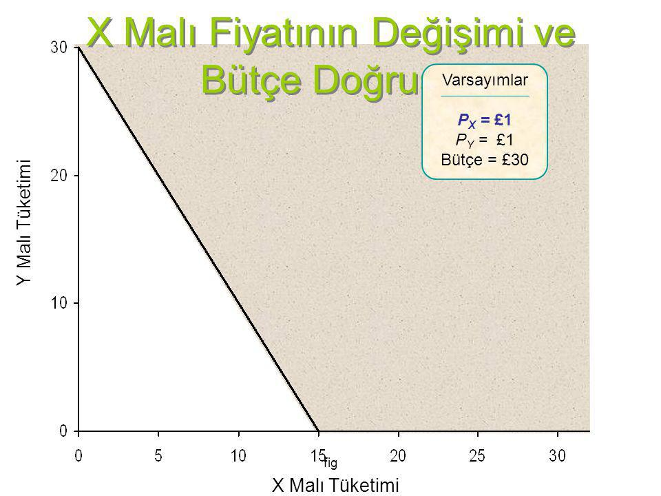 X Malı Fiyatının Değişimi ve Bütçe Doğrusu