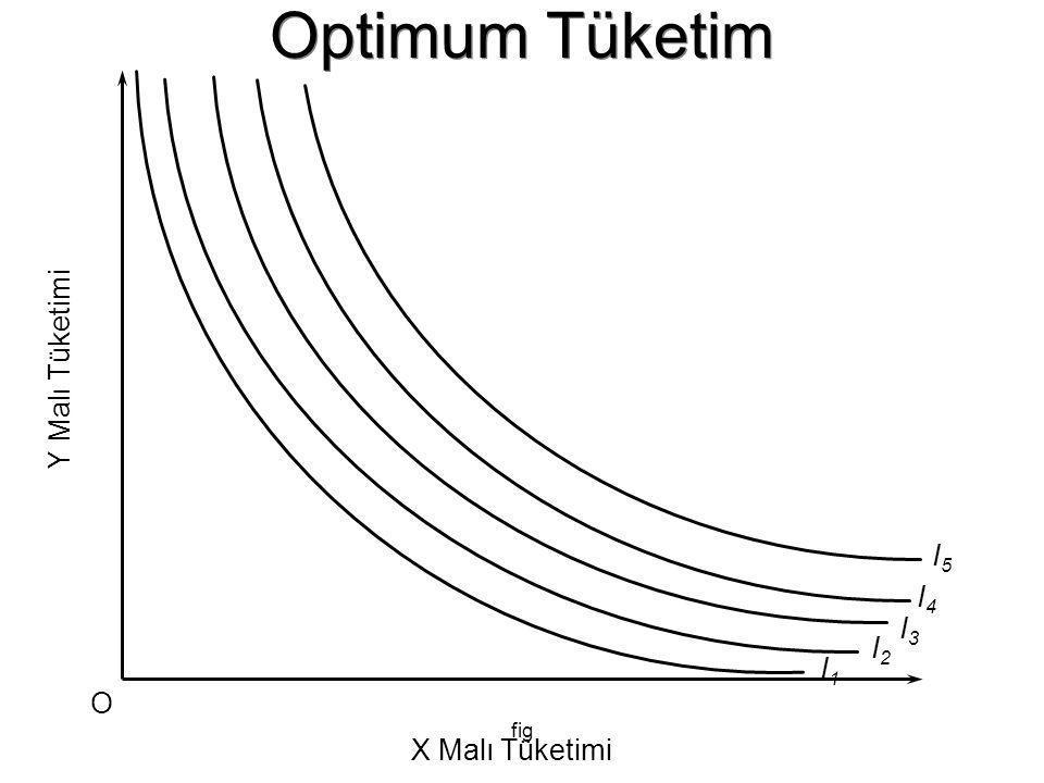 Optimum Tüketim Y Malı Tüketimi I5 I4 I3 I2 I1 O fig X Malı Tüketimi