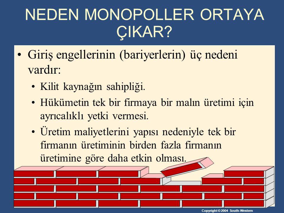 NEDEN MONOPOLLER ORTAYA ÇIKAR