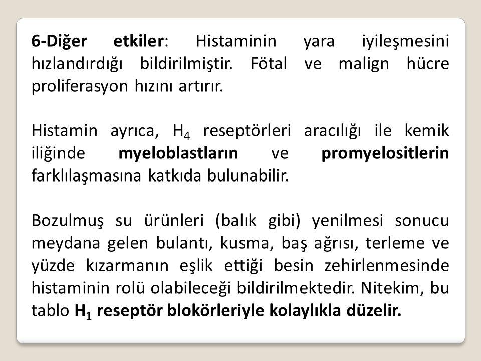 6-Diğer etkiler: Histaminin yara iyileşmesini hızlandırdığı bildirilmiştir. Fötal ve malign hücre proliferasyon hızını artırır.