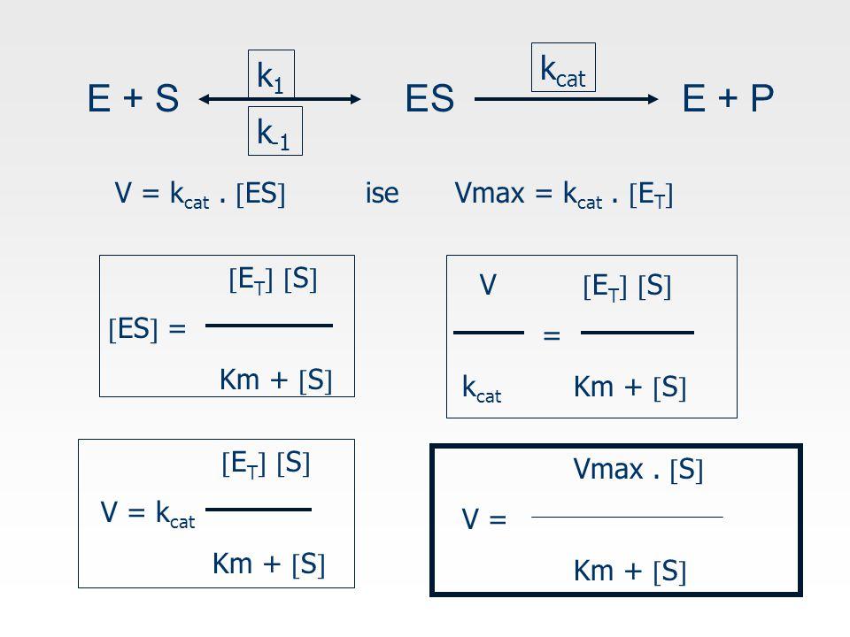 E + S ES E + P kcat k1 k-1 V = kcat . ES ise Vmax = kcat . ET
