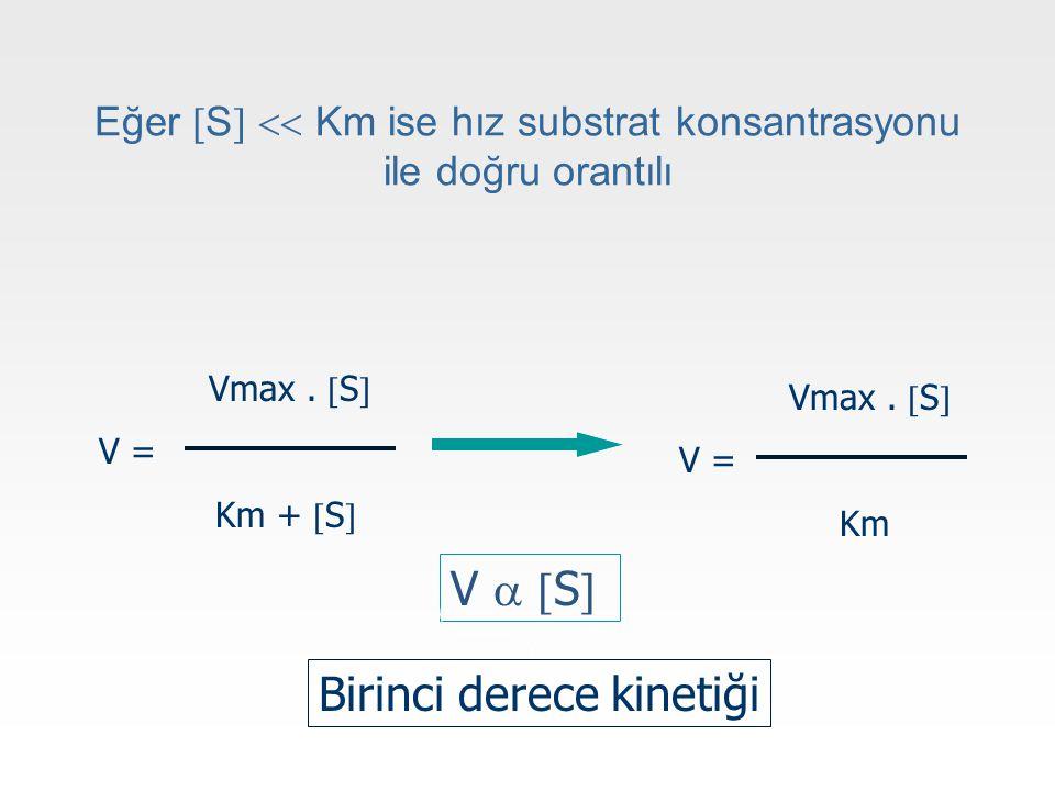 Eğer S  Km ise hız substrat konsantrasyonu ile doğru orantılı