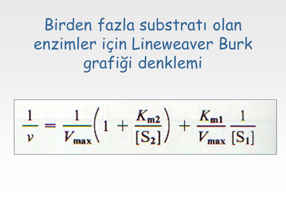 Birden fazla substratı olan enzimler için Lineweaver Burk grafiği denklemi