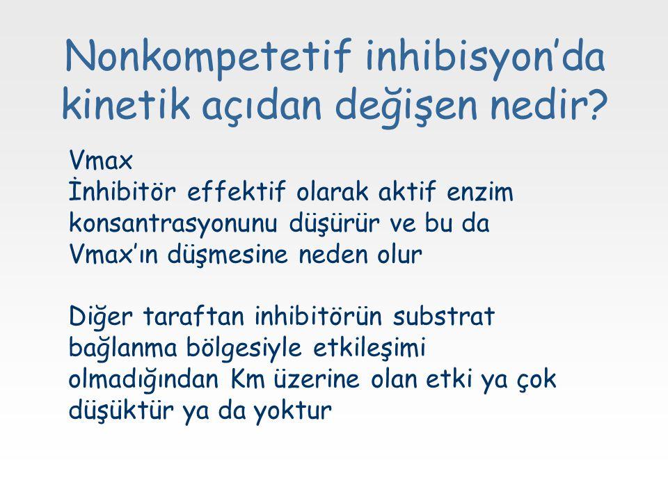 Nonkompetetif inhibisyon'da kinetik açıdan değişen nedir