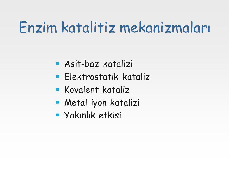 Enzim katalitiz mekanizmaları