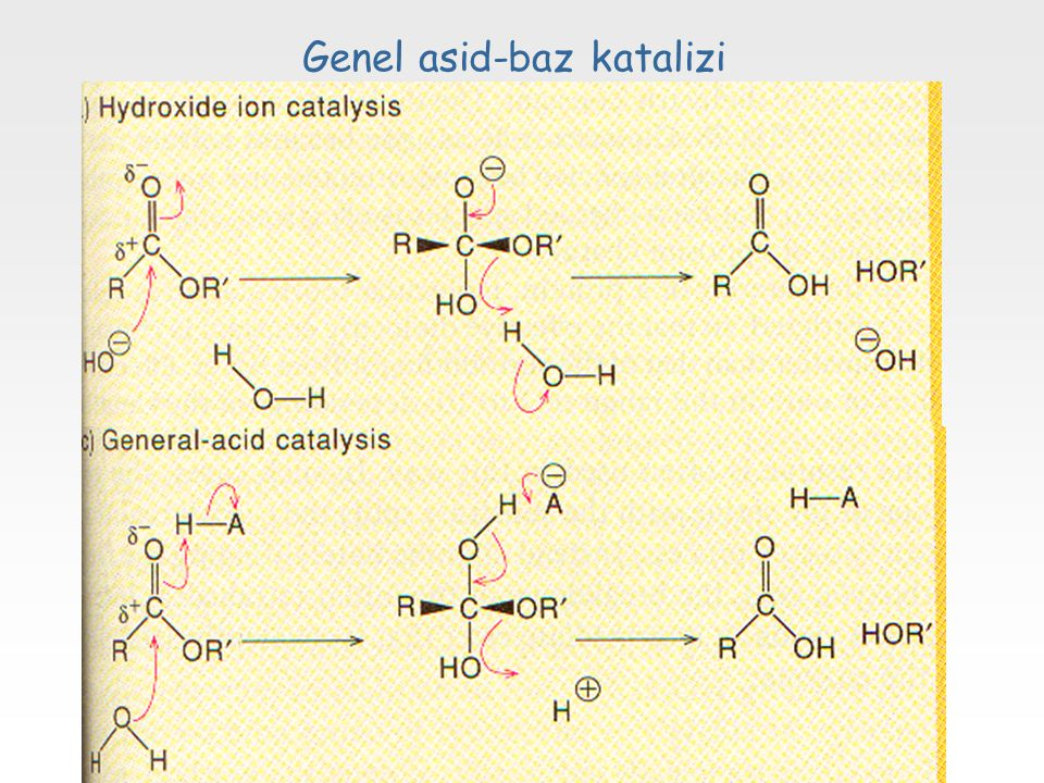 Genel asid-baz katalizi