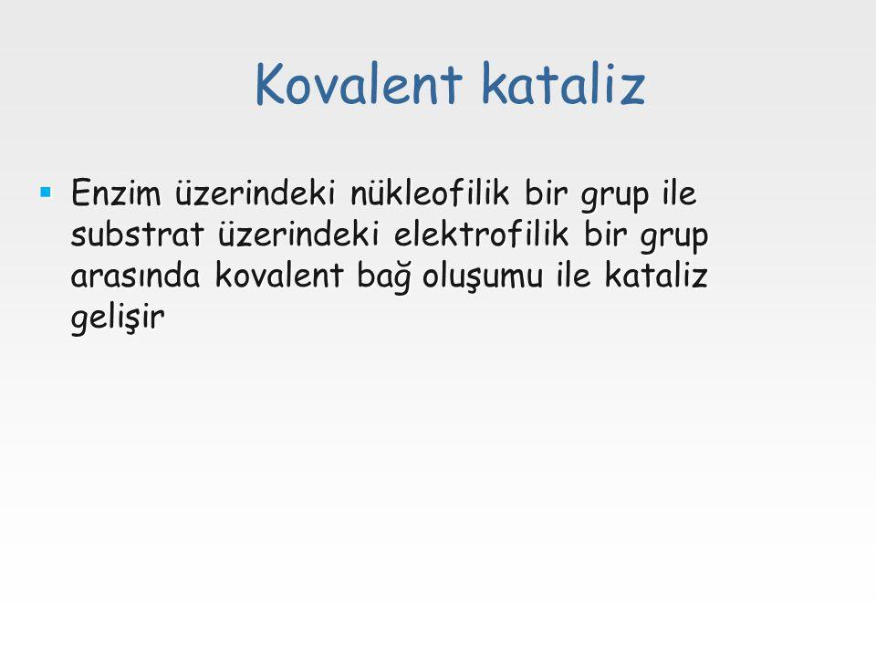 Kovalent kataliz