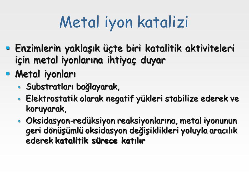 Metal iyon katalizi Enzimlerin yaklaşık üçte biri katalitik aktiviteleri için metal iyonlarına ihtiyaç duyar.