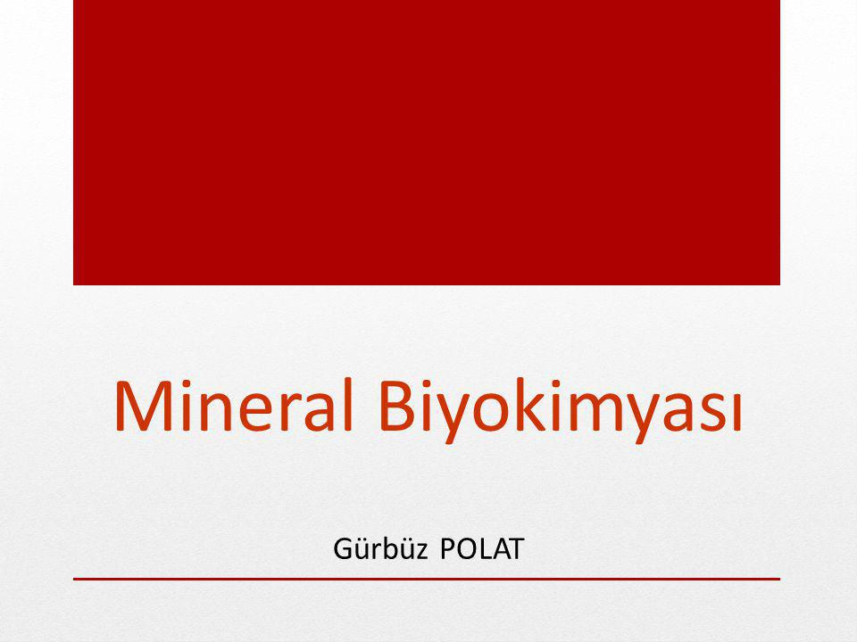 Mineral Biyokimyası Gürbüz POLAT