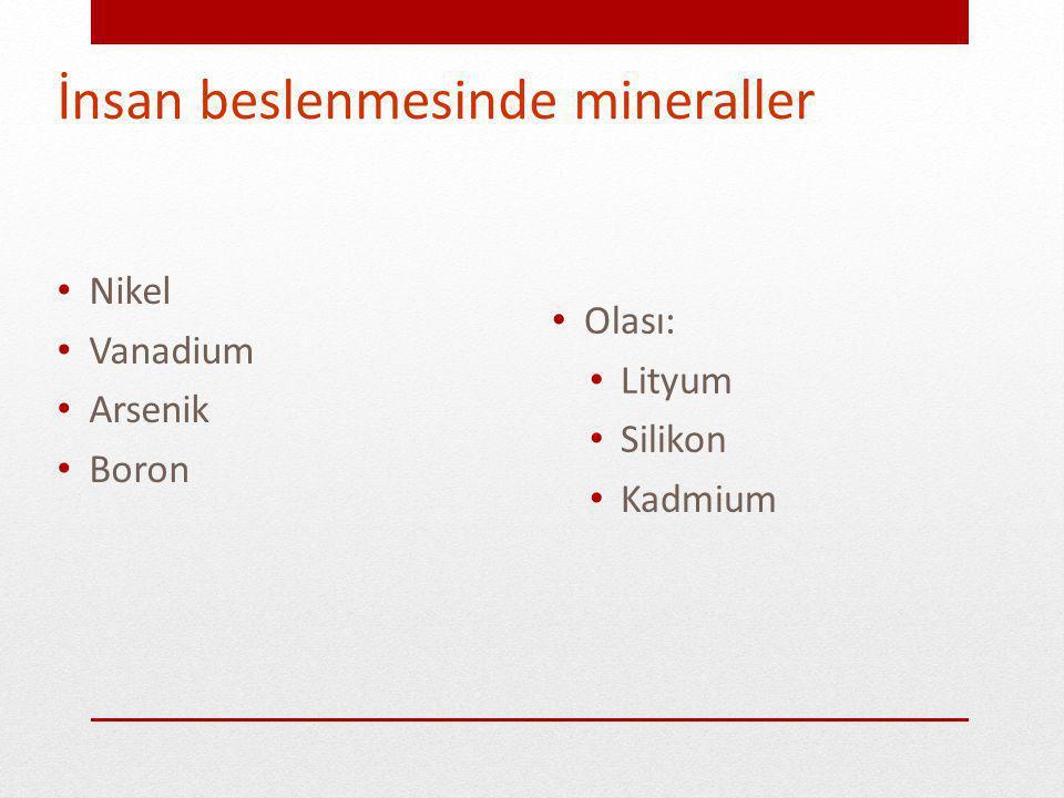 İnsan beslenmesinde mineraller