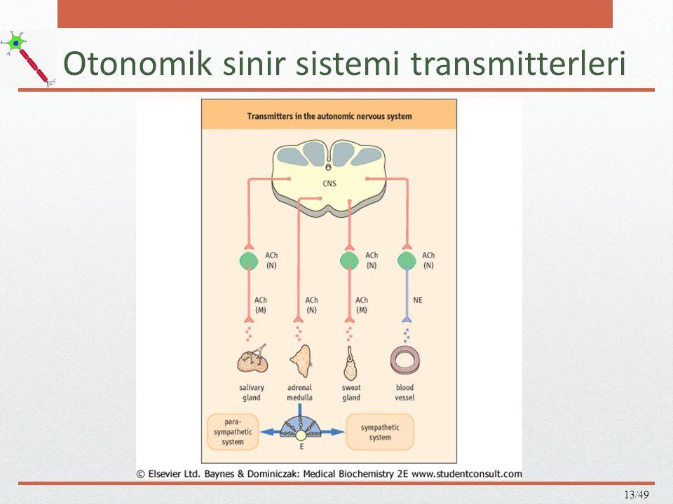 Otonomik sinir sistemi transmitterleri