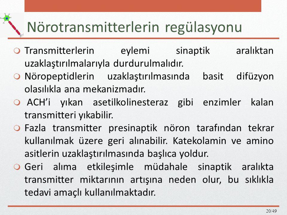Nörotransmitterlerin regülasyonu