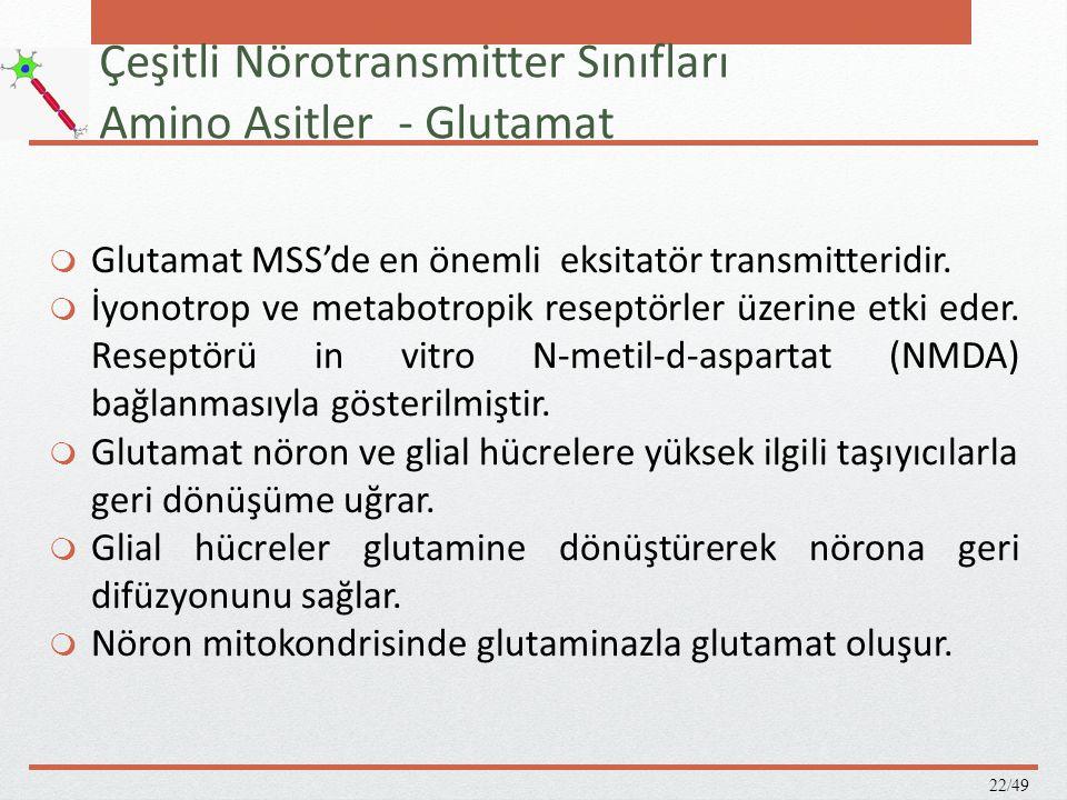 Çeşitli Nörotransmitter Sınıfları Amino Asitler - Glutamat