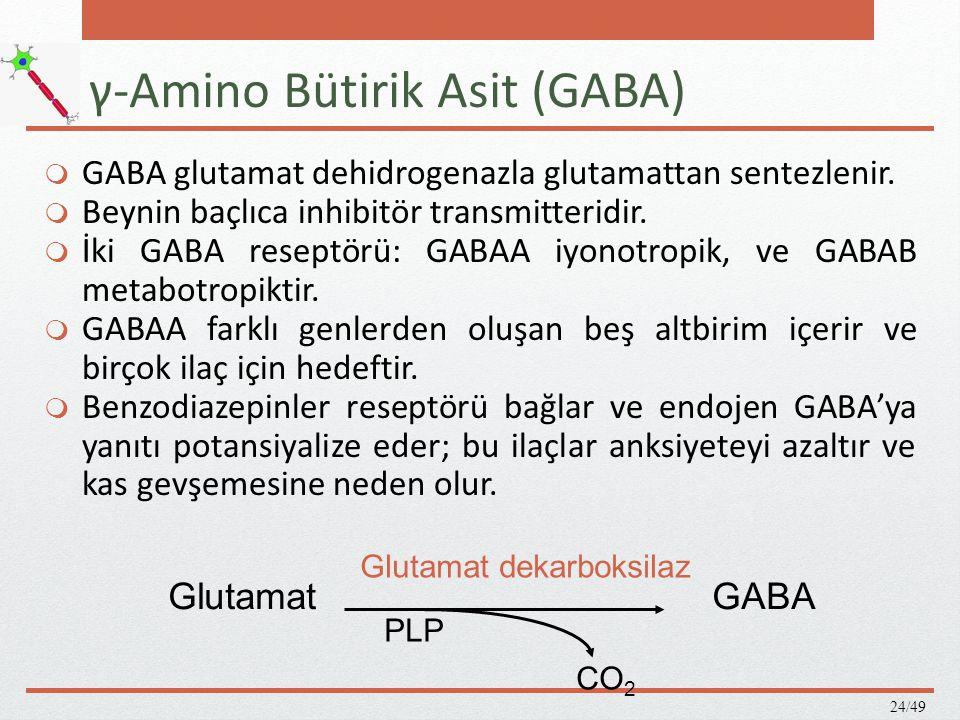 γ-Amino Bütirik Asit (GABA)