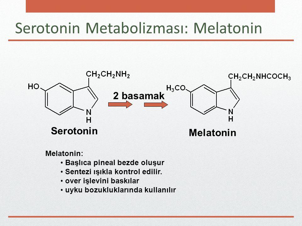 Serotonin Metabolizması: Melatonin