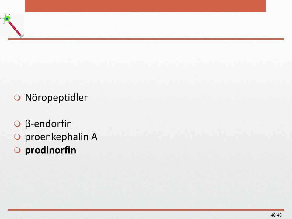 Nöropeptidler β-endorfin proenkephalin A prodinorfin