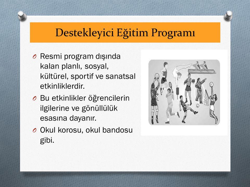 Destekleyici Eğitim Programı