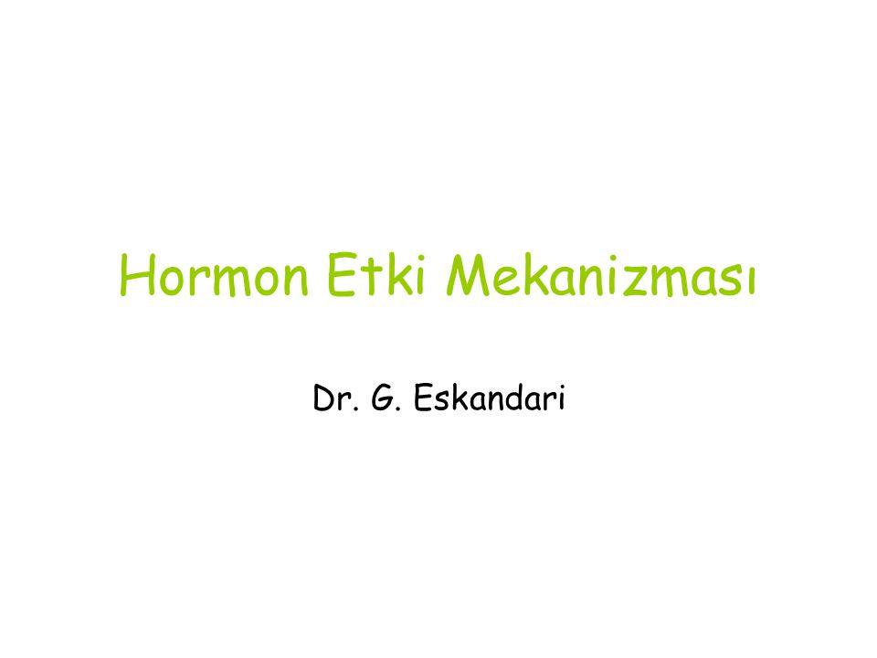 Hormon Etki Mekanizması