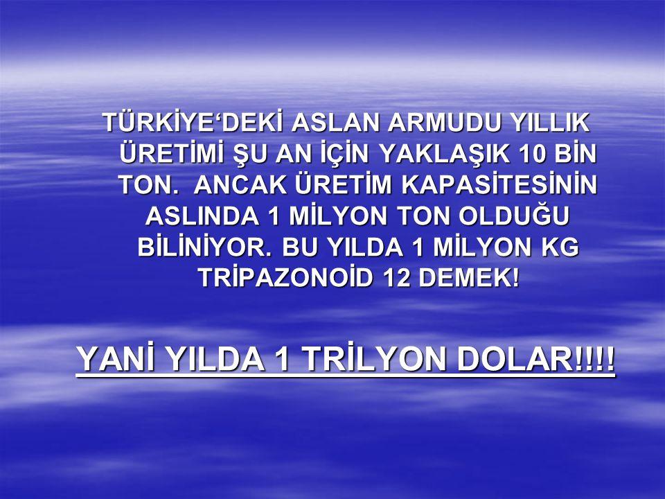 YANİ YILDA 1 TRİLYON DOLAR!!!!