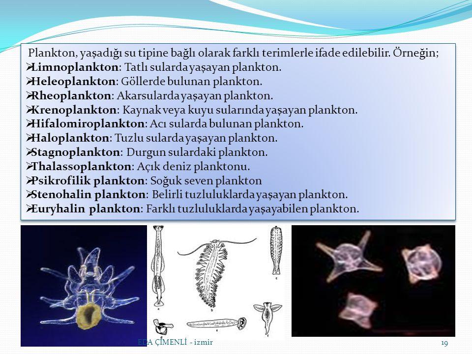 Limnoplankton: Tatlı sularda yaşayan plankton.