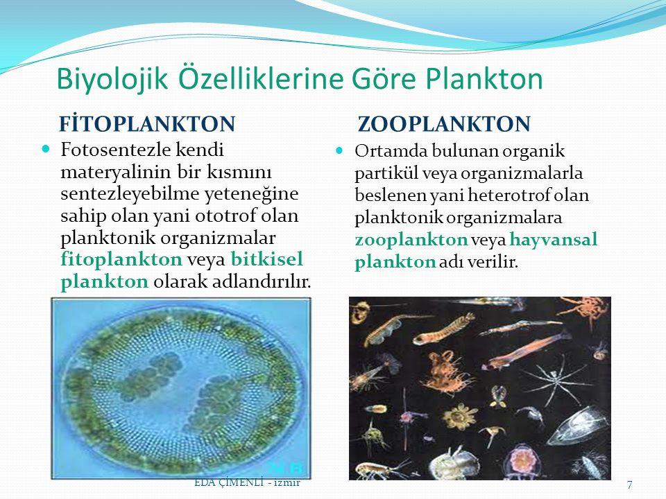 Biyolojik Özelliklerine Göre Plankton