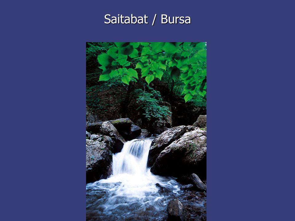 Saitabat / Bursa
