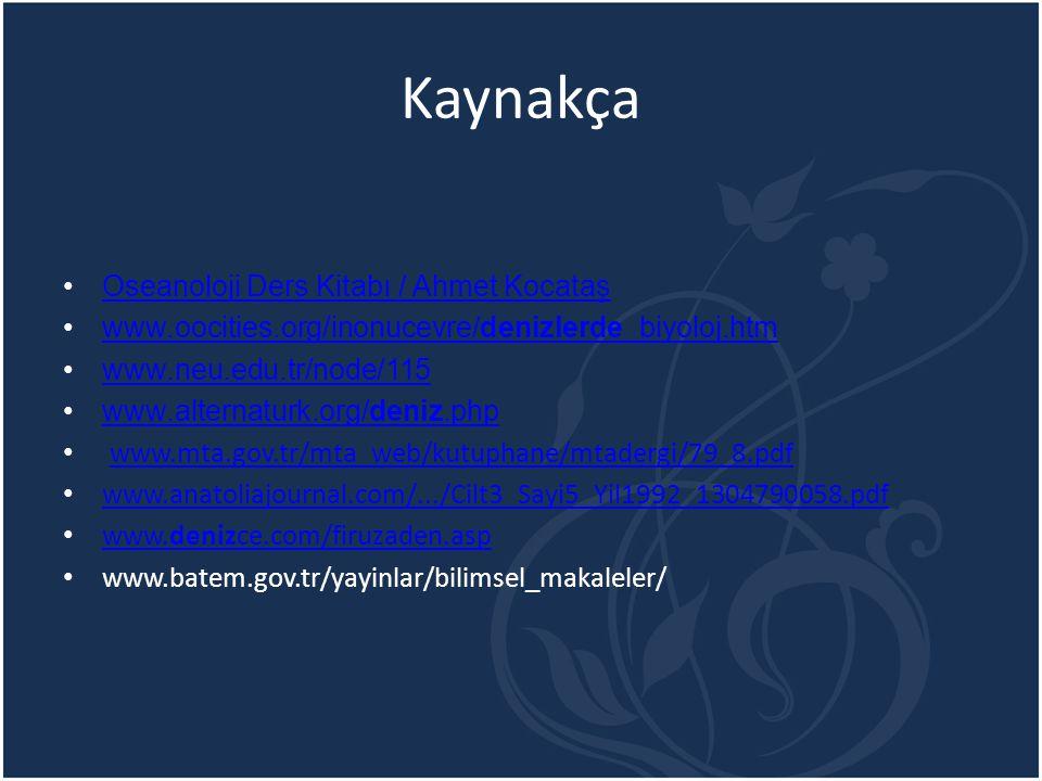 Kaynakça Oseanoloji Ders Kitabı / Ahmet Kocataş
