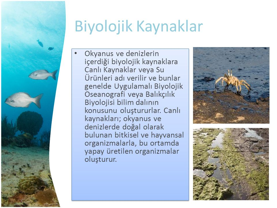 Biyolojik Kaynaklar