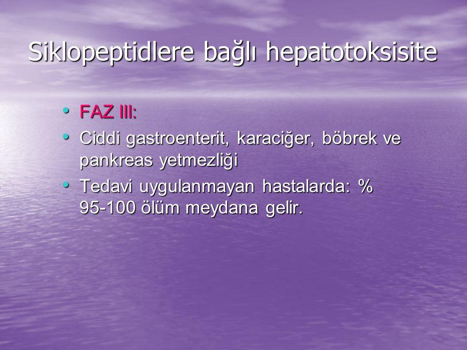 Siklopeptidlere bağlı hepatotoksisite