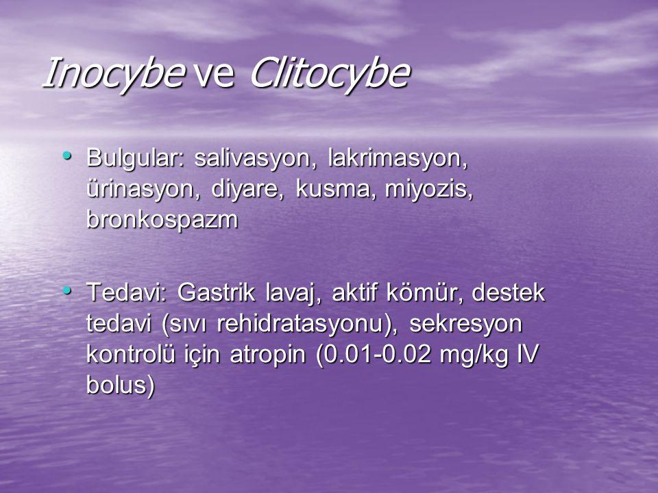 Inocybe ve Clitocybe Bulgular: salivasyon, lakrimasyon, ürinasyon, diyare, kusma, miyozis, bronkospazm.