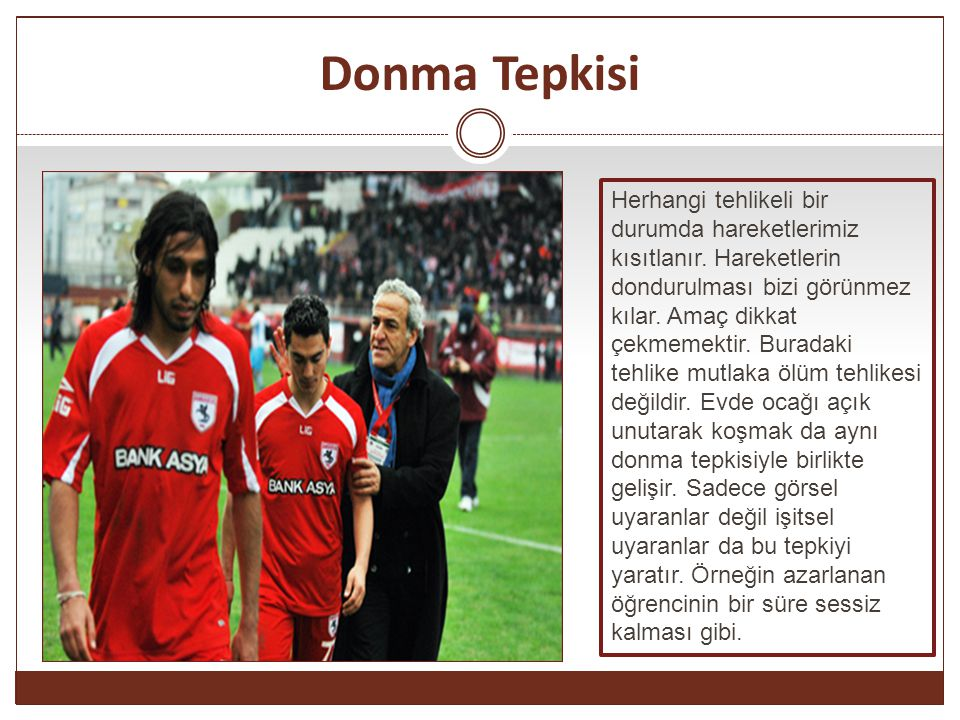 Donma Tepkisi