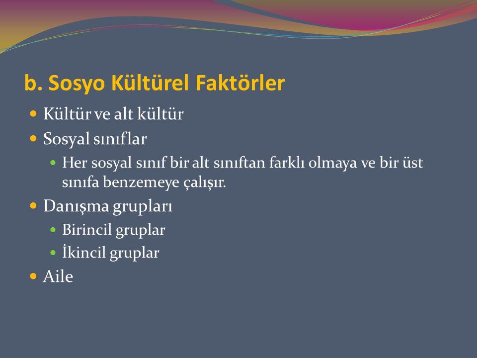 b. Sosyo Kültürel Faktörler