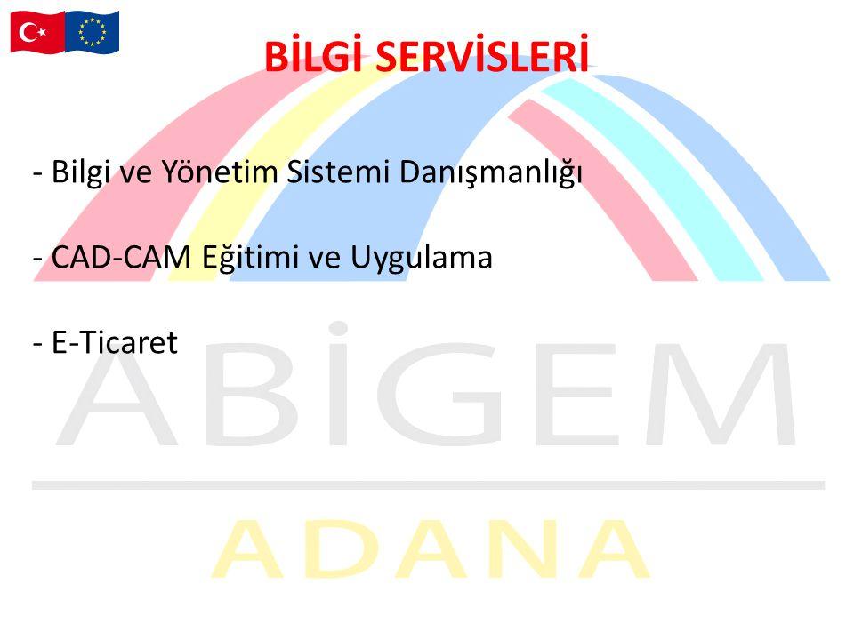 BİLGİ SERVİSLERİ Bilgi ve Yönetim Sistemi Danışmanlığı