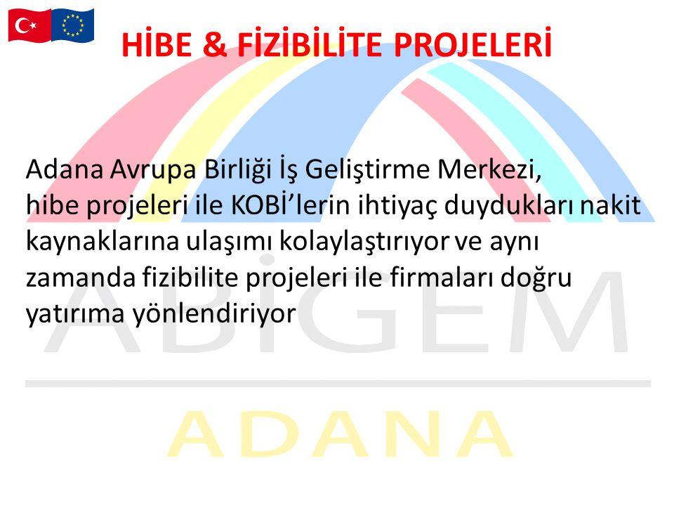 HİBE & FİZİBİLİTE PROJELERİ