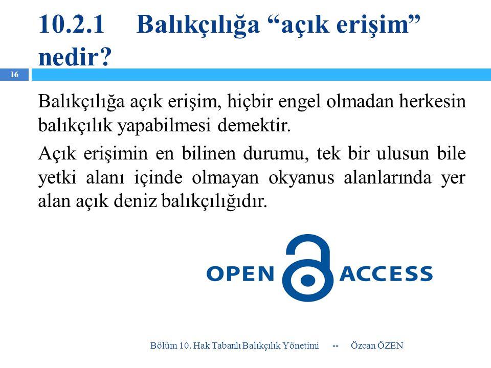 10.2.1 Balıkçılığa açık erişim nedir