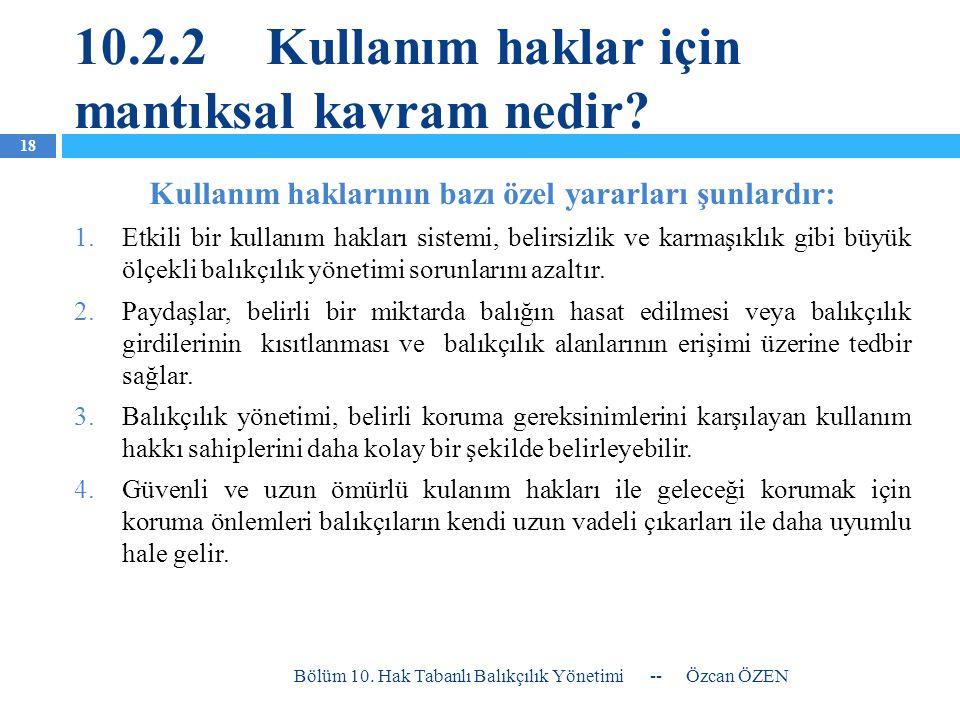 10.2.2 Kullanım haklar için mantıksal kavram nedir