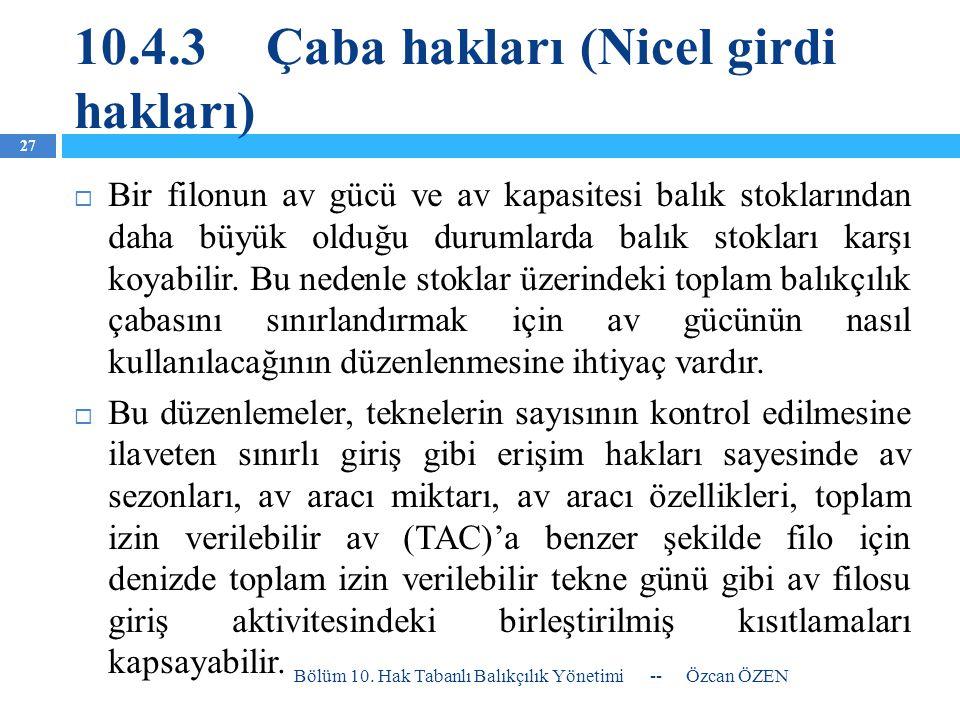 10.4.3 Çaba hakları (Nicel girdi hakları)