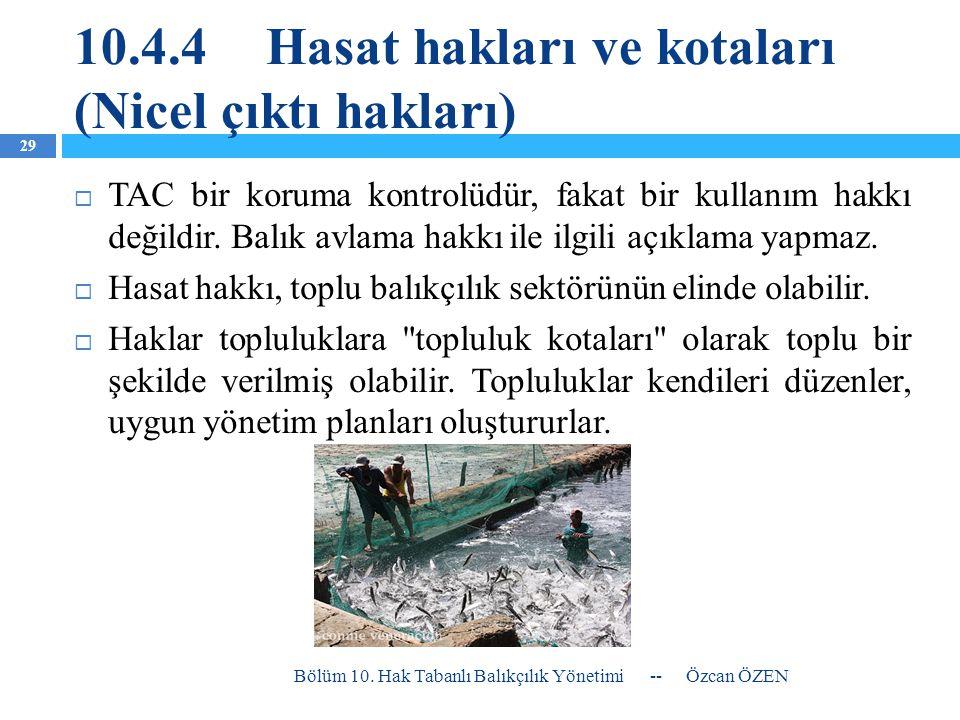 10.4.4 Hasat hakları ve kotaları (Nicel çıktı hakları)