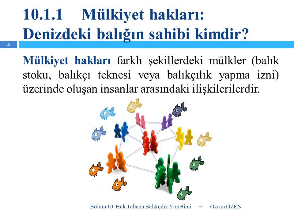 10.1.1 Mülkiyet hakları: Denizdeki balığın sahibi kimdir